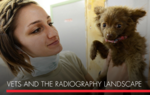 , Veterinarians and the Radiography Landscape